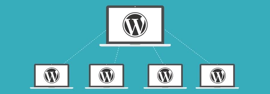 Cosa significa creare una rete di siti con WordPress Multisite