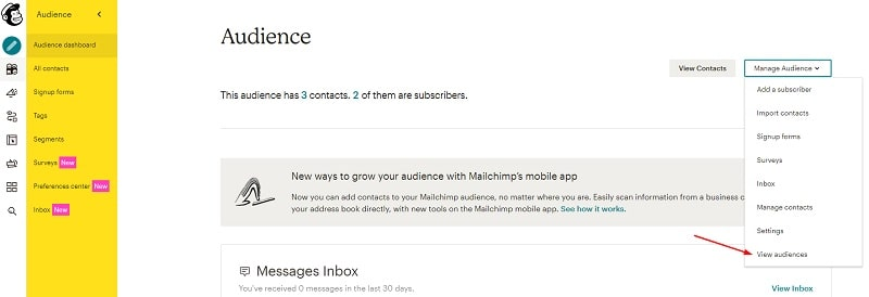 Audience MailChimp