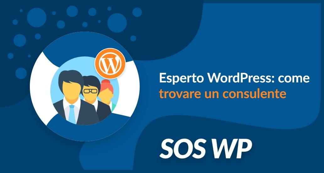 Esperto WordPress: come trovare un consulente