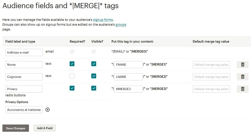 Creare newsletter personalizzate - Merge Tags per MailChimp